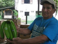 Fair Trade Banana producer