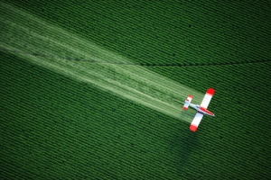 Pesticide Spray