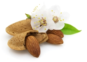 Almonds need bees