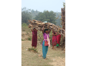 Nepal women carrying wood