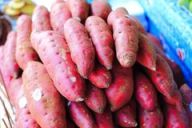 sweet-potato-kumara-image-local-market-67049588